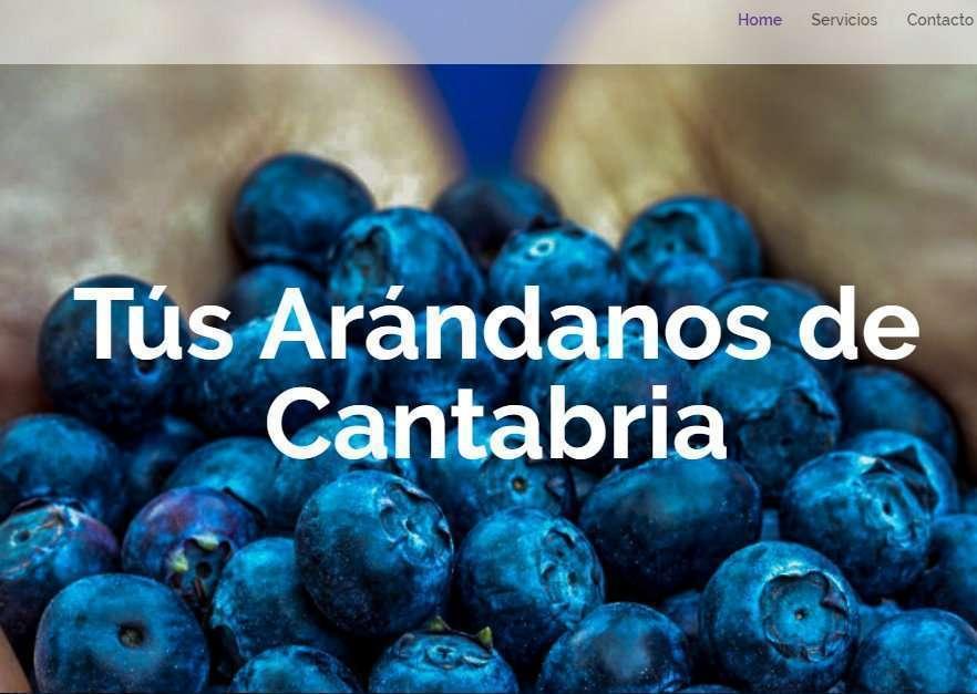 Ejemplo diseño web para Berry's Land