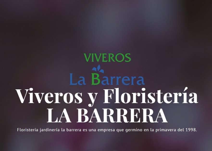 Ejemplo diseño web para Viveros y Floristería la Barrera