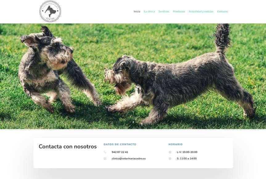 Diseño Web Clínica Veterinaria Castro