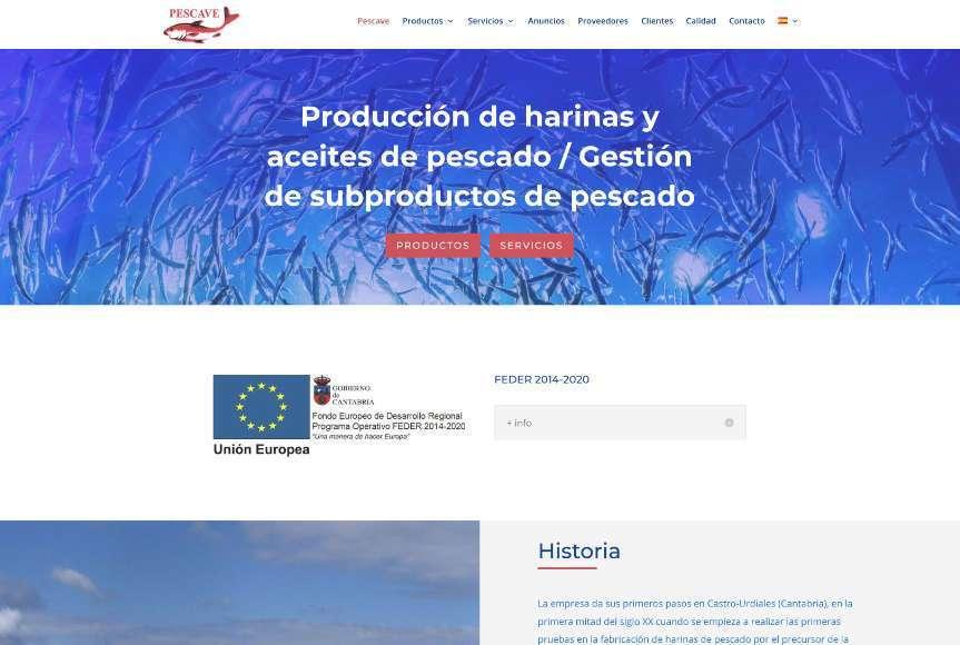 Diseño Web Pescave