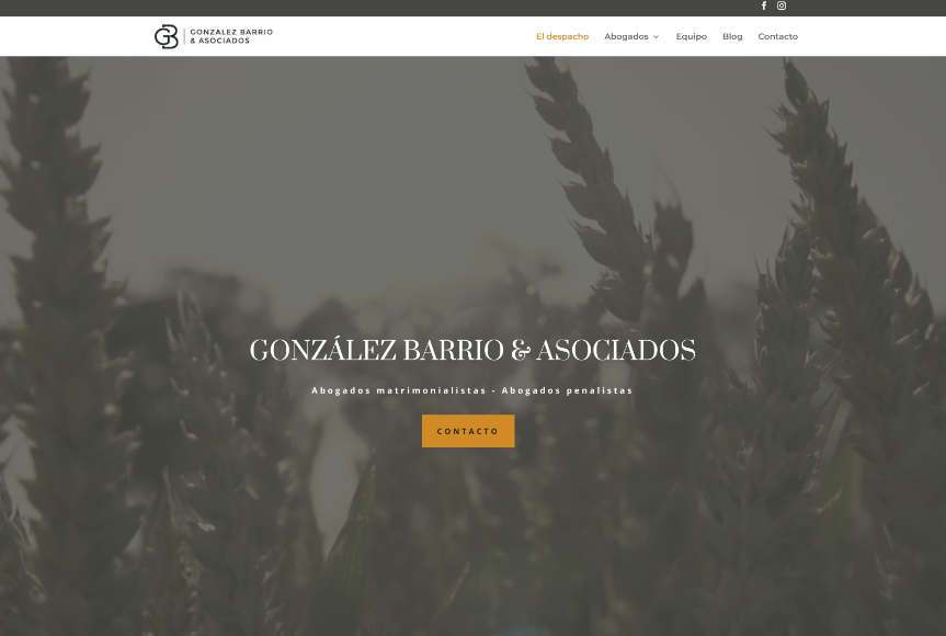 González Barrio & Asociados